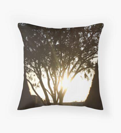 Bright Shadows Throw Pillow