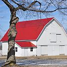 White Barn with Red Roof by mltrue