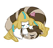 Sleepy Jirachi and Furret Photographic Print