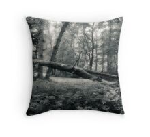 One of the Fallen Oak Openings Metro Park Throw Pillow