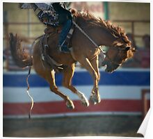 Bucking Bronco - Cranbourne Rodeo 2010 Poster
