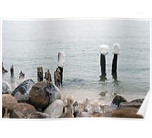 Frigid Cape Cod Poster
