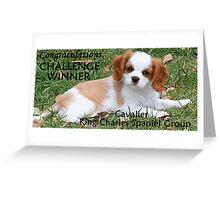 Challenge Winner Banner Greeting Card