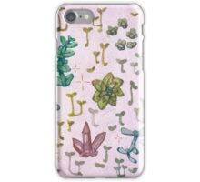 Succulents and Crystals iPhone Case/Skin