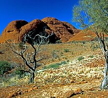 Valley Of The Winds by Terry Everson