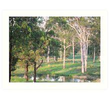 Reflective Lagoon Art Print