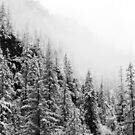 snow in Sichuan by nicolaMY