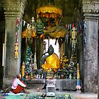 Mango Shrouded Buddha by Trishy