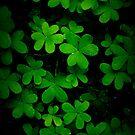 """Little Green"" by NEmens"