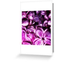 Meet the Lilacs Greeting Card