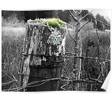 old fence post Poster