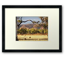 Smell of Hay - Victoria River NT Framed Print