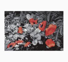 Fallen Petals Baby Tee
