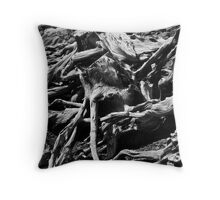 Castle Wall - Blarney Castle Throw Pillow