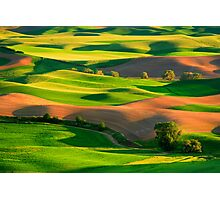 Palouse Patchwork Photographic Print