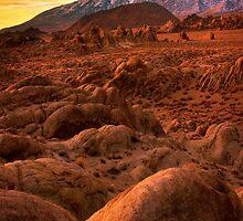 Martian Landscape by Inge Johnsson