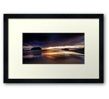 Strelitzia Dawn Framed Print