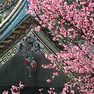 Taiwan, Temple by Digby