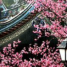 Plum Blossom and Temple by Digby