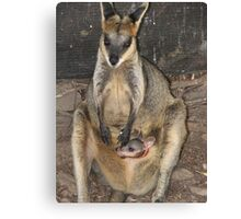 Joey & Mum Canvas Print