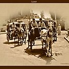 Carriages at Luxor by David's Photoshop