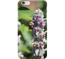 Abuzz about nectar! iPhone Case/Skin