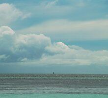 over the horizon by Skye Hohmann