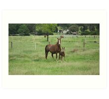 A Mare and Her Foal on a Rural Property. Art Print