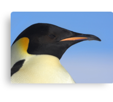 Emperor Penguin Headshot Canvas Print