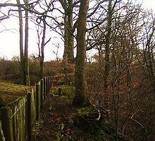 Autumnal grace in Scotland by mela80