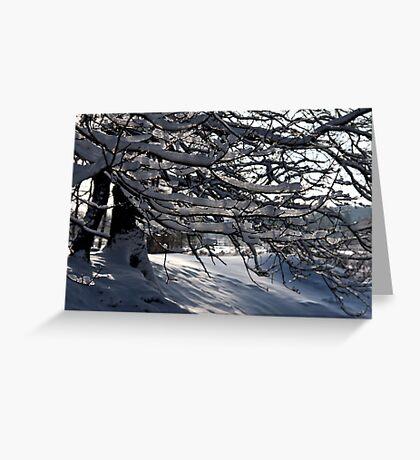 Frozen Twigs #3 Greeting Card