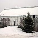 bleak barn...northern wisconsin by Lynne Prestebak