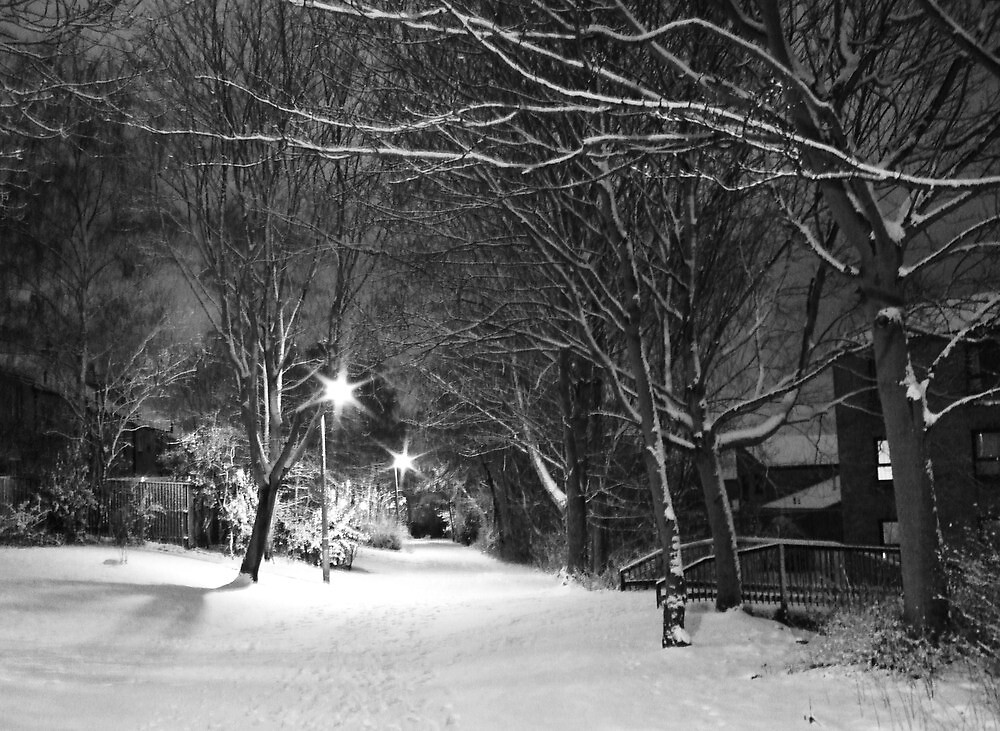Winter snow city park in Edinburgh, Scotland by mela80
