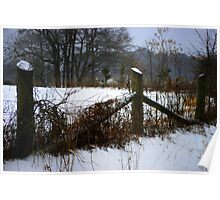 Winter Pasture Fence Poster