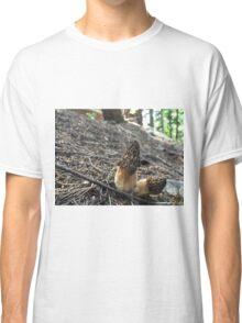 Dried Morels  Classic T-Shirt
