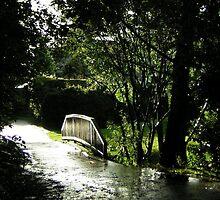 Bridge in the park - Edinburgh by mela80