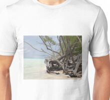 Breathtaking Unisex T-Shirt