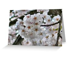 Surrounded By Blooms Greeting Card
