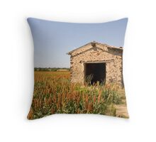 Old Shed in the Languedoc Vineyards Throw Pillow