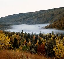 Morning Mist in Fall, Wells Gray Provincial Park, Alberta, Canada by hinomaru