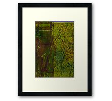 Serious green Framed Print