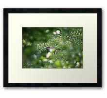 The lovely Charlize Framed Print