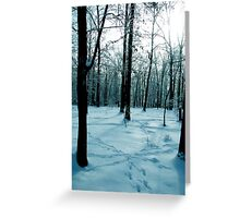 Blue Lonely Winter Greeting Card