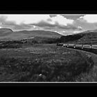 Welsh Mountain railway by Nathan  Holmes