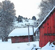 Red Chicken Coop by © Betty E Duncan ~ Blue Mountain Blessings Photography