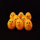 Easter Chicks by Barbara Morrison