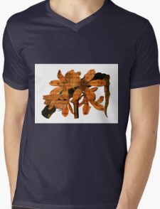Singing Amaryllis Mens V-Neck T-Shirt