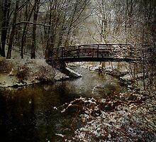 Trail's Bridge by M a r i e B a r c i a