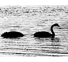 The Duckness Monster Photographic Print