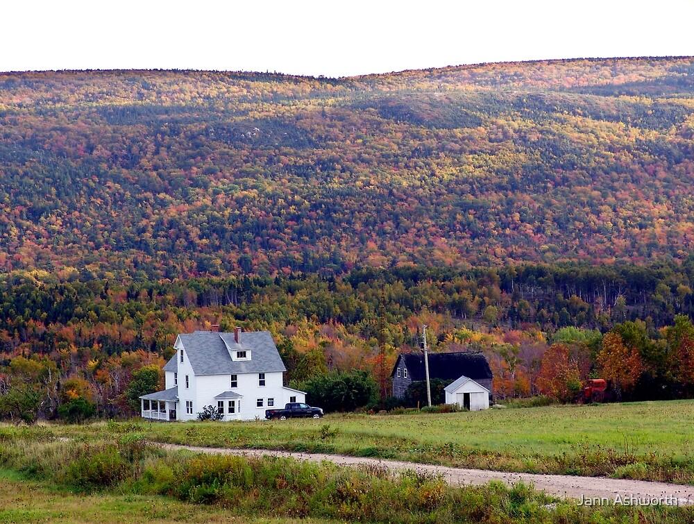 Cape Breton Homestead by Jann Ashworth